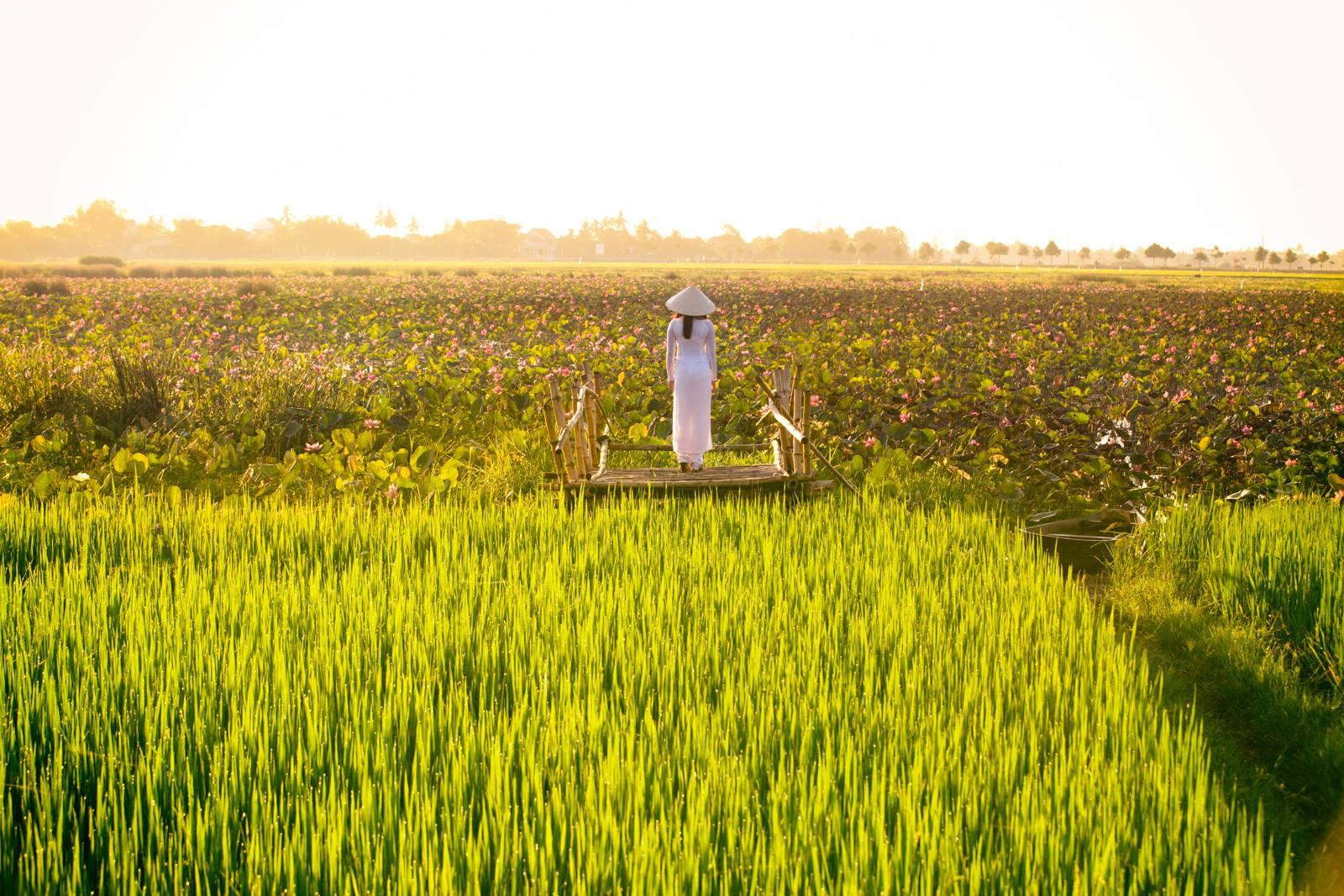 Dobré ráno z Hoi An