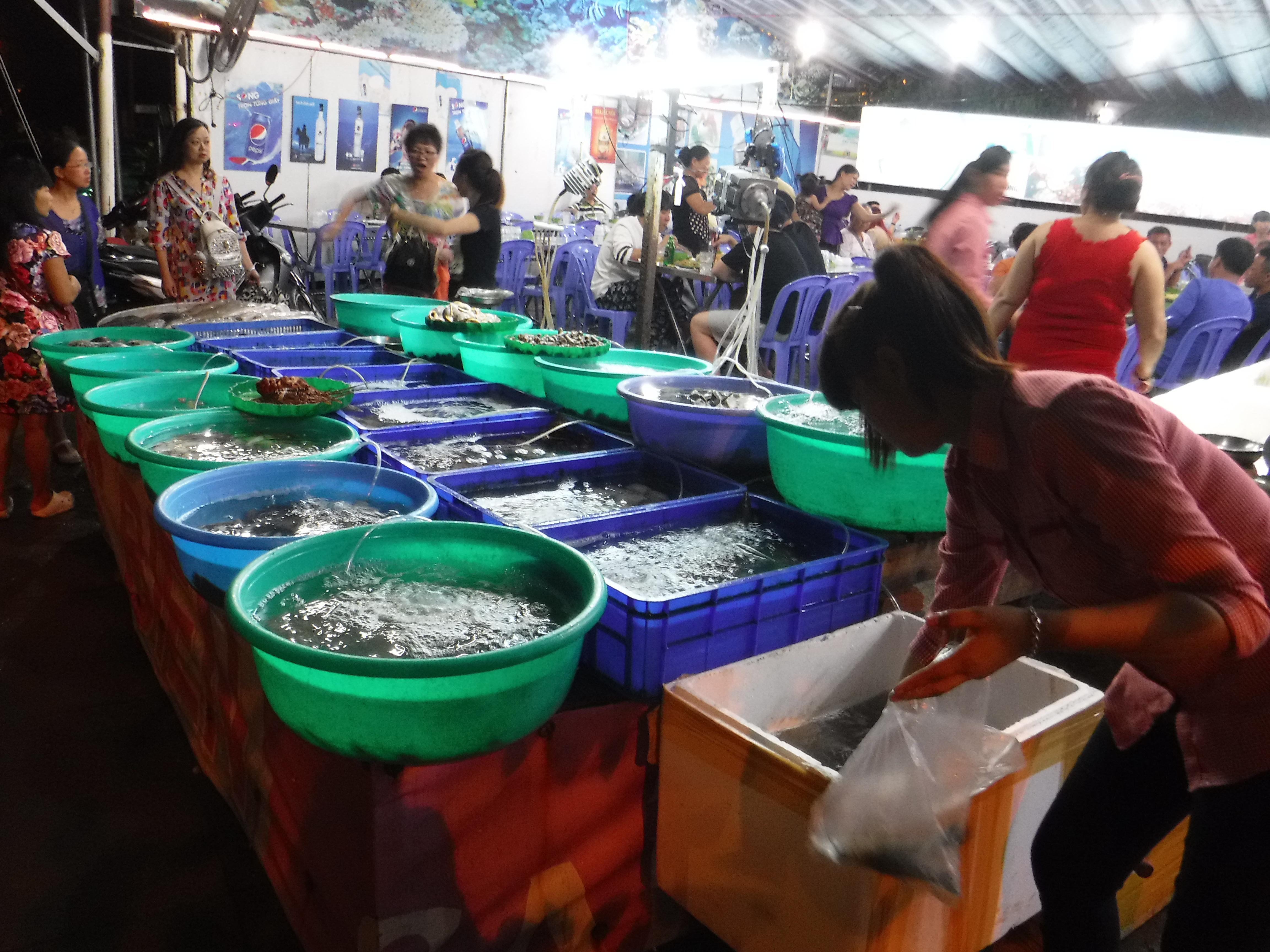 Vybíráme si mořské plody