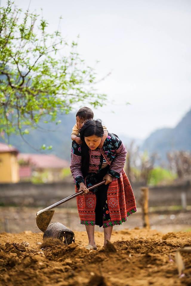 Minorita Hmong